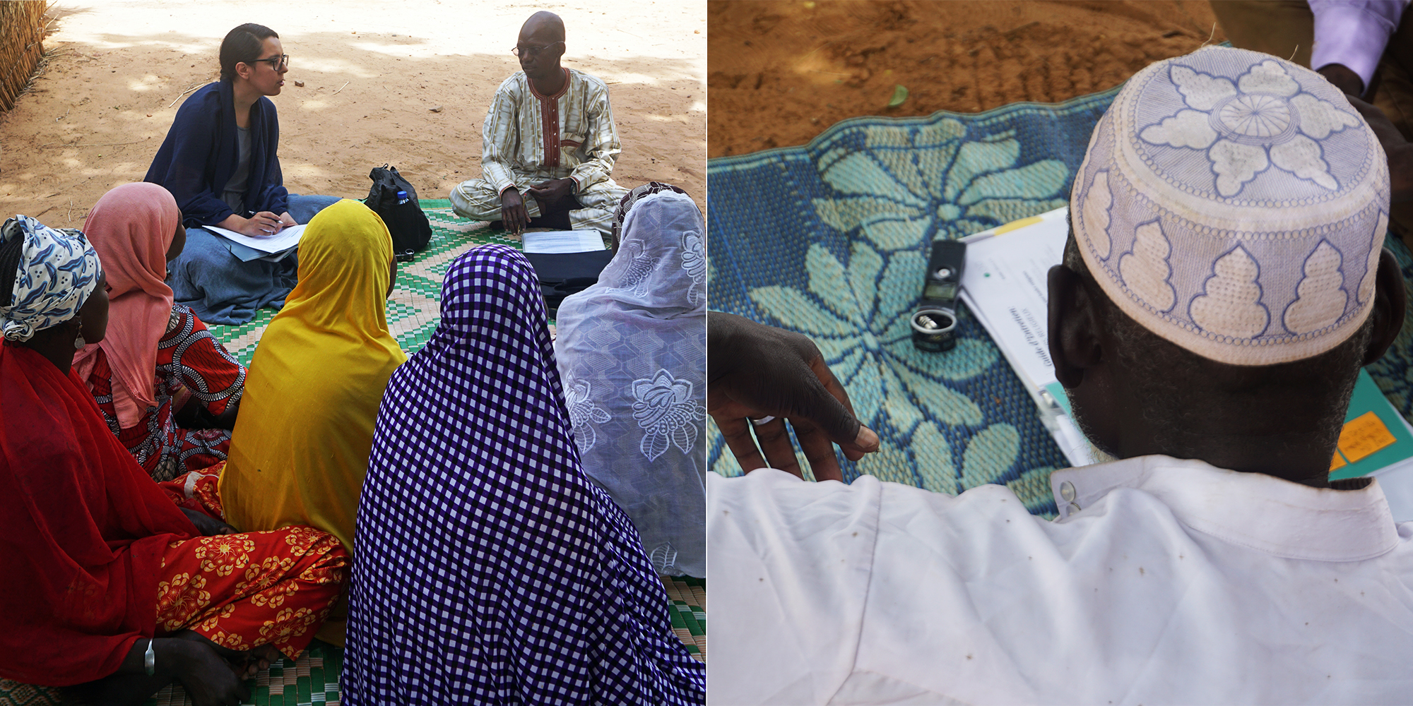 Niger Research